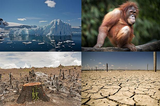 環境問題のノーベル賞!?「ブループラネット賞」を知っていますか?—旭硝子財団の活動【1】