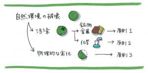 3principle