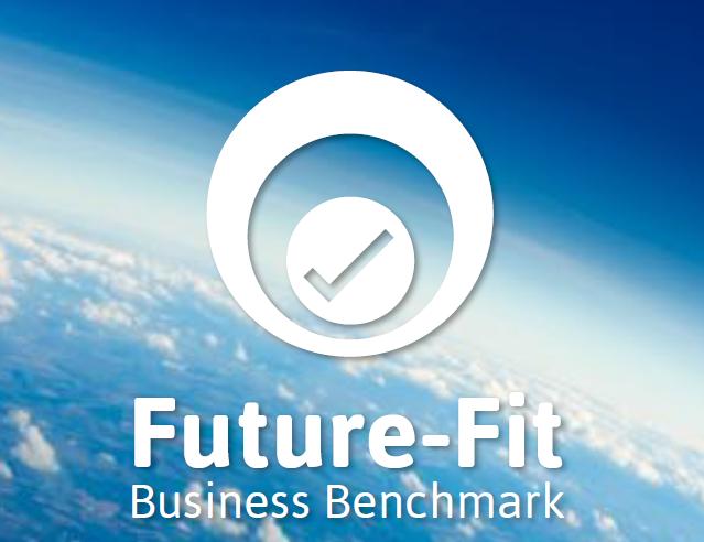 未来を生きる組織のためのベンチマークツール、Future-Fitとは